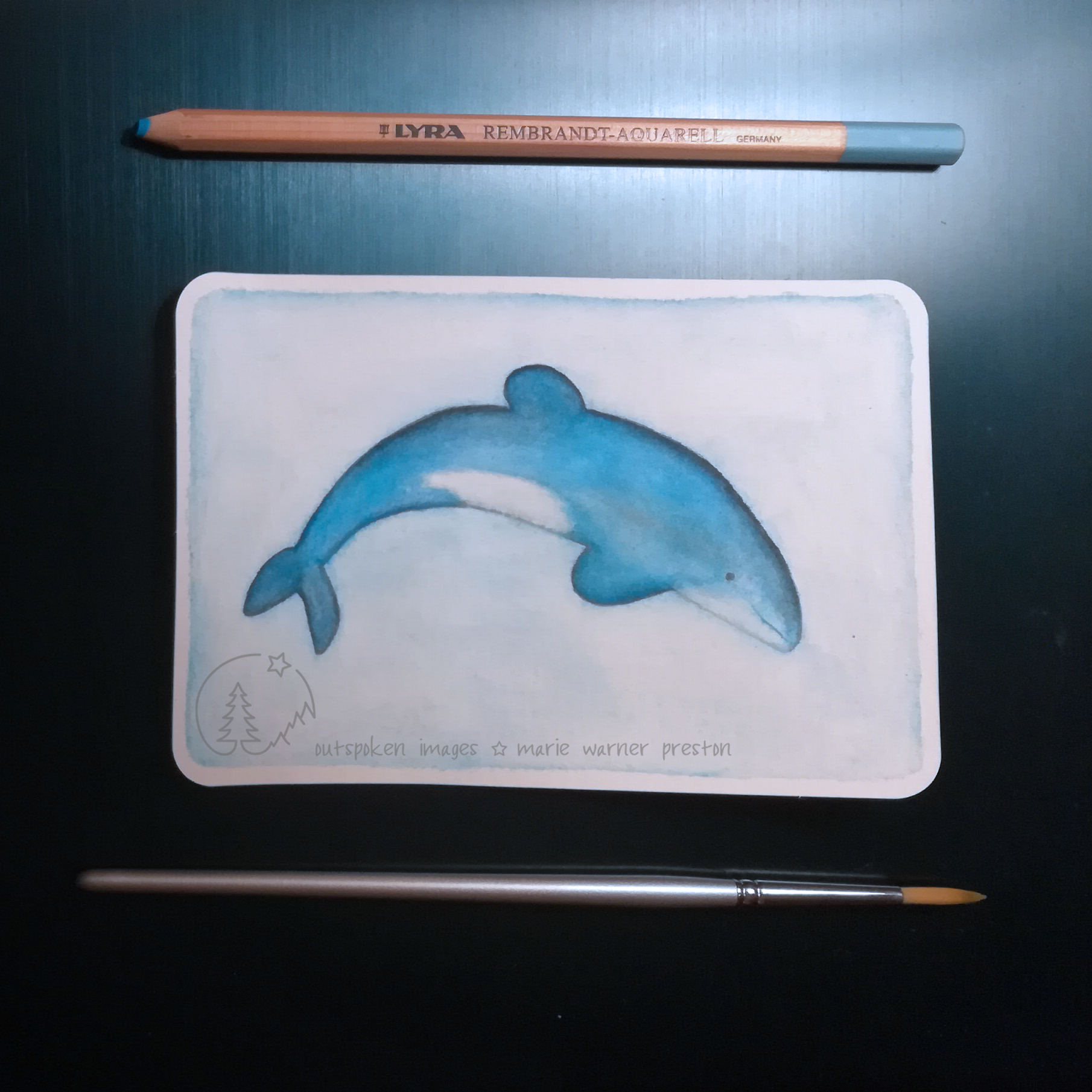 blue maui dolphin painting with blue pencil and silver paintbrush on blue background. #DrawTheOceans dolphin (watercolour) ©2021 Outspoken Images by Marie Warner Preston
