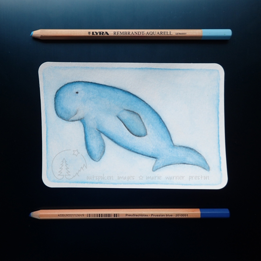 blue Dugong painting with blue pencils on blue background. ©2021 Outspoken Images by Marie Warner Preston
