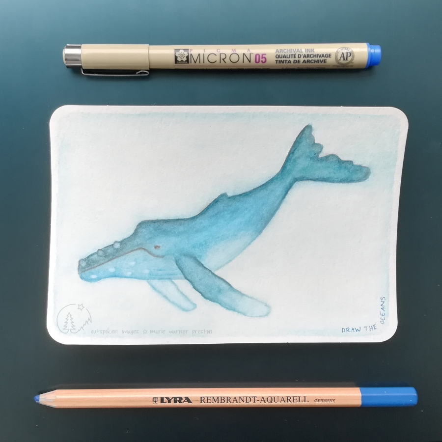 blue humpack whale painting with blue pen and blue pencil on blue background. ©2021 Outspoken Images by Marie Warner Preston