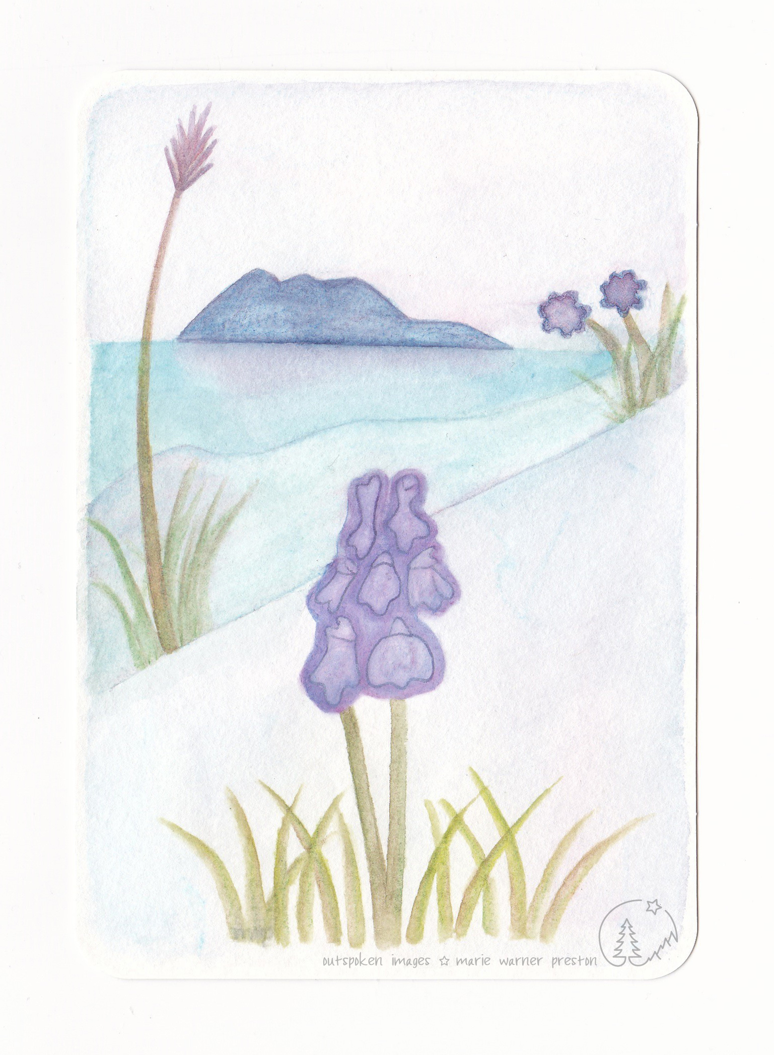 Purple flowers and grass seeds with green stems. Purple mountain reflected water. Purple Prospect ©2021 Outspoken Images by Marie Warner Preston