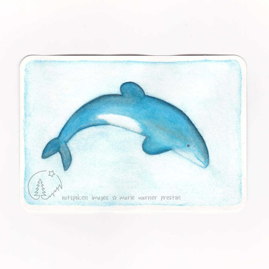Watercolour painting: blue Maui dolphin on blue background ©2021 Outspoken Images by Marie Warner Preston