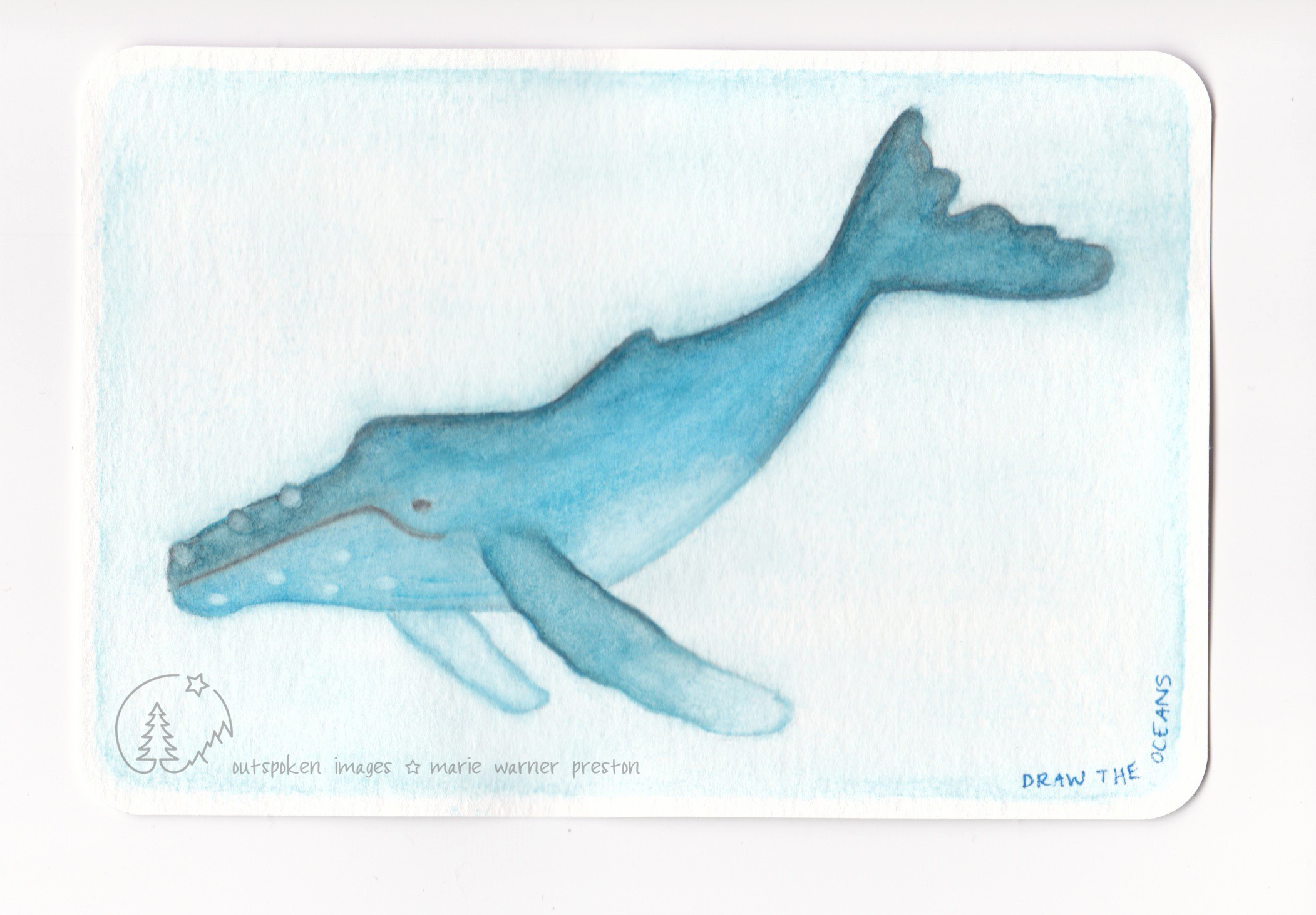 Watercolour painting: blue Humpback whale on blue background with Draw The Oceans text. ©2021 Outspoken Images by Marie Warner Preston