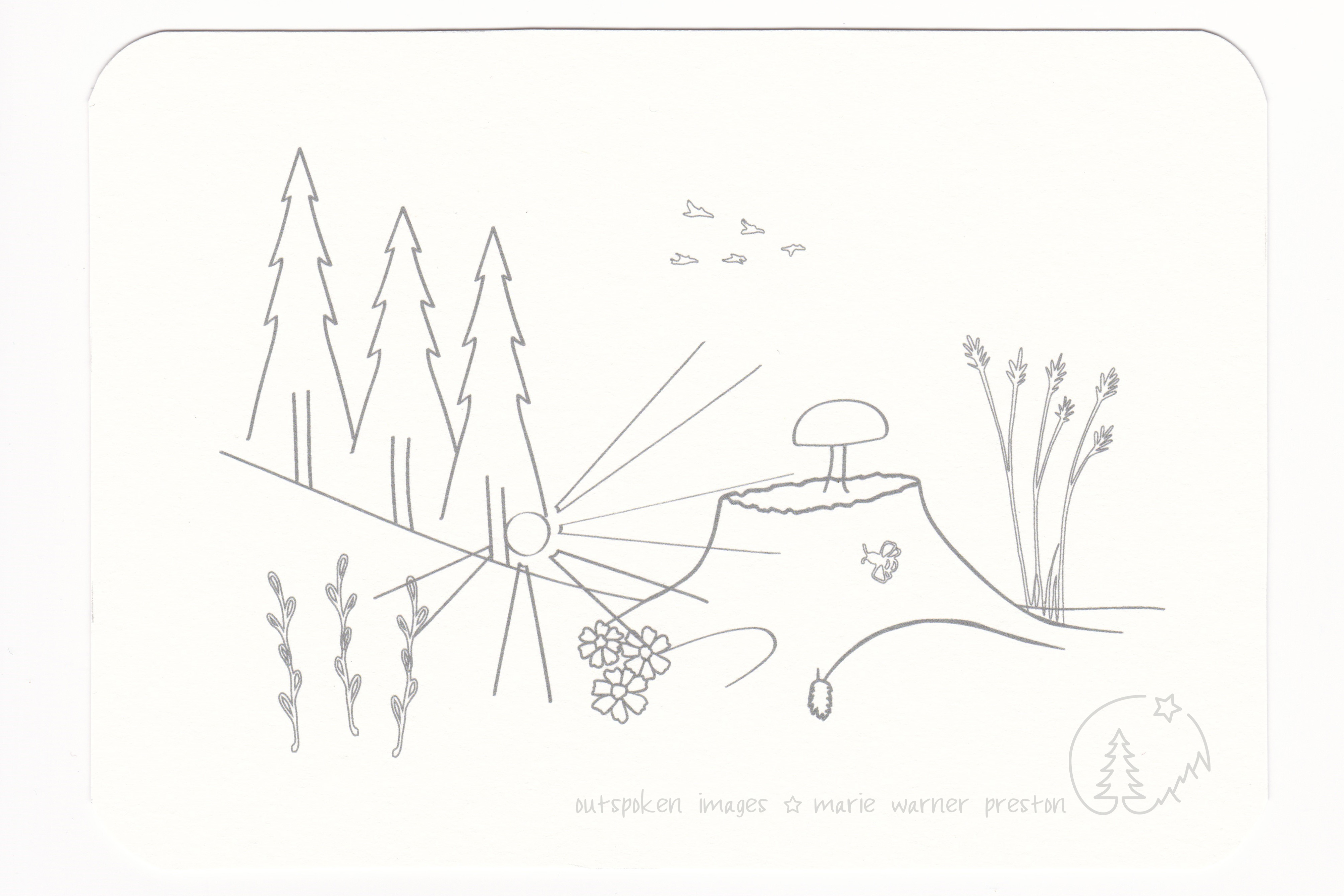 Forest scene outline: Sunrays through evergreen trees and blueberries. Tree stump with mushroom, flowers, tall grass. Birds and bee. ©2021 Outspoken Images by Marie Warner Preston